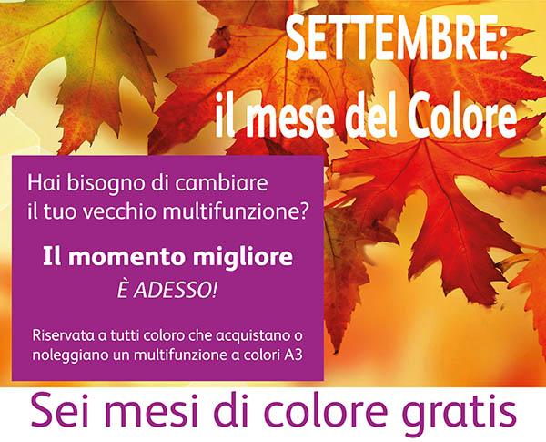 Promozione 6 mesi GRATIS A3 colori Ufficio